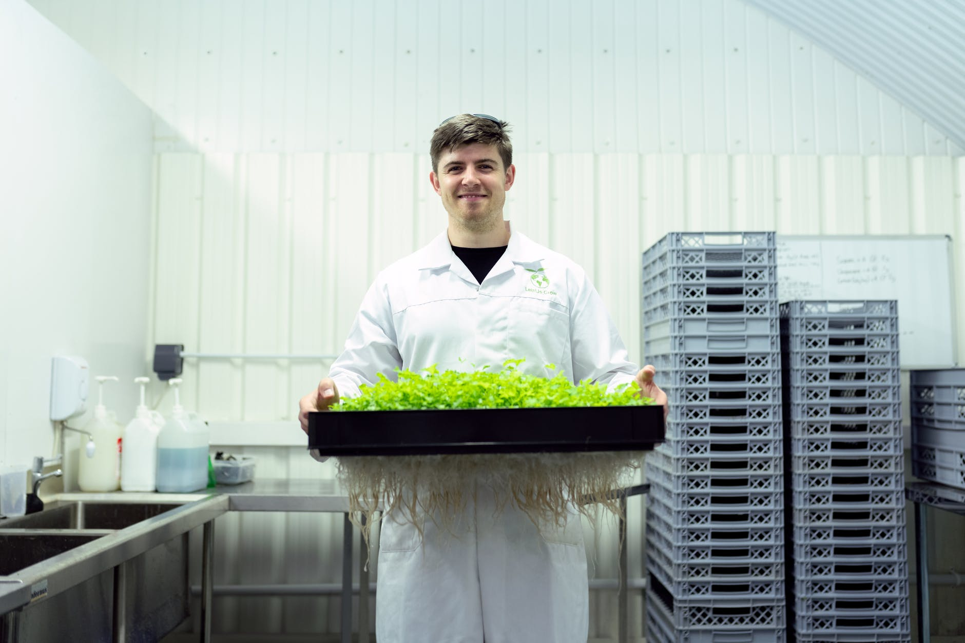 scientist holding crops in laboratory | more organic choices